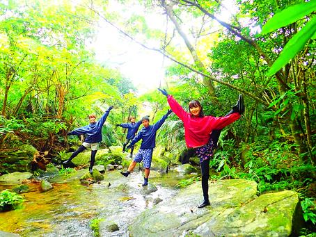 西表島旅行〜ジャングル&滝巡りをしよう〜💚🌴