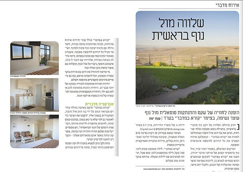 Desert Call review in Haaretz