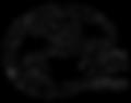 logo MSB.png