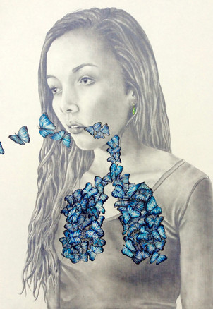 A Breath of Butterflies