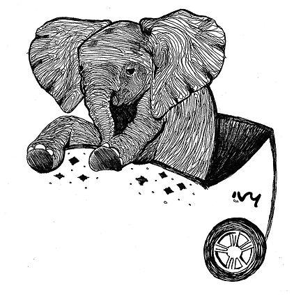 elefante_baby.jpg