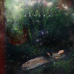beyond_cover_edited.jpg