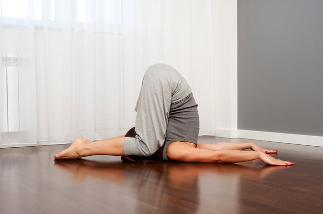 Flexibility and Mobility Continued