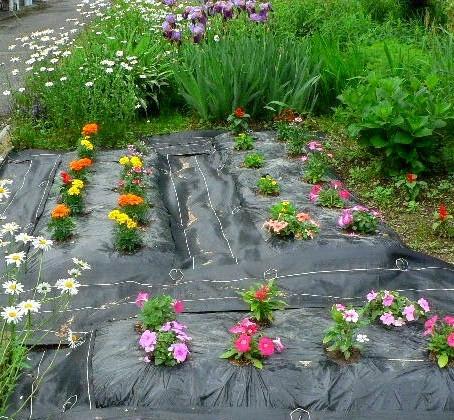 花壇の準備できました。