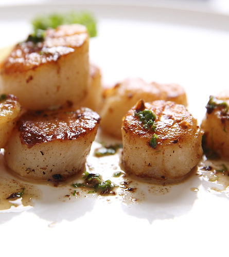 Fried Scallops in white_