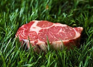 Why It Makes Cents to Pay for Organic, Grass Fed Meat