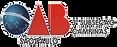 logo OAB Campinas 5.png