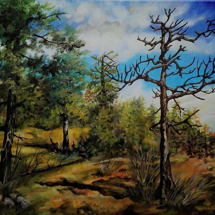 San Diego Torrey Pines Trail