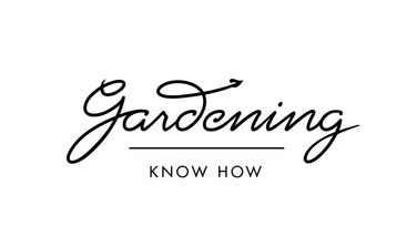 Blog Gardening Know How