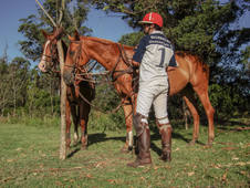 Polo lessons for guests outside Haras de Charme 3