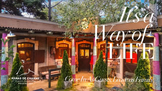Haras de Charme boutique Hotel, its a way of life