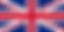 steadicam official United Kingdom UK