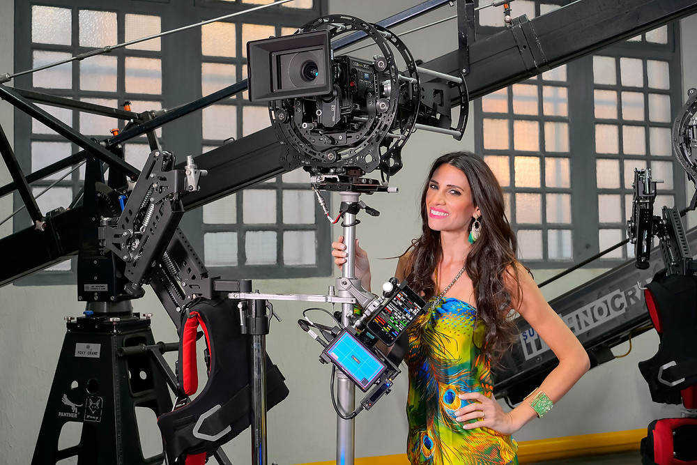 What is a Stedicam? How Does a professional stedicam works?  STEDICAM BASICS