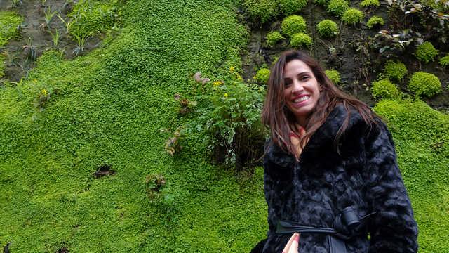 Hanging gardens Paris