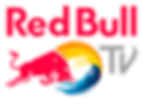 redbull lifecycles basson steady logo 3