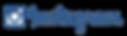 logo Instagram feed logo azul con camara