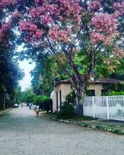 aldeia sapucaia.jpg