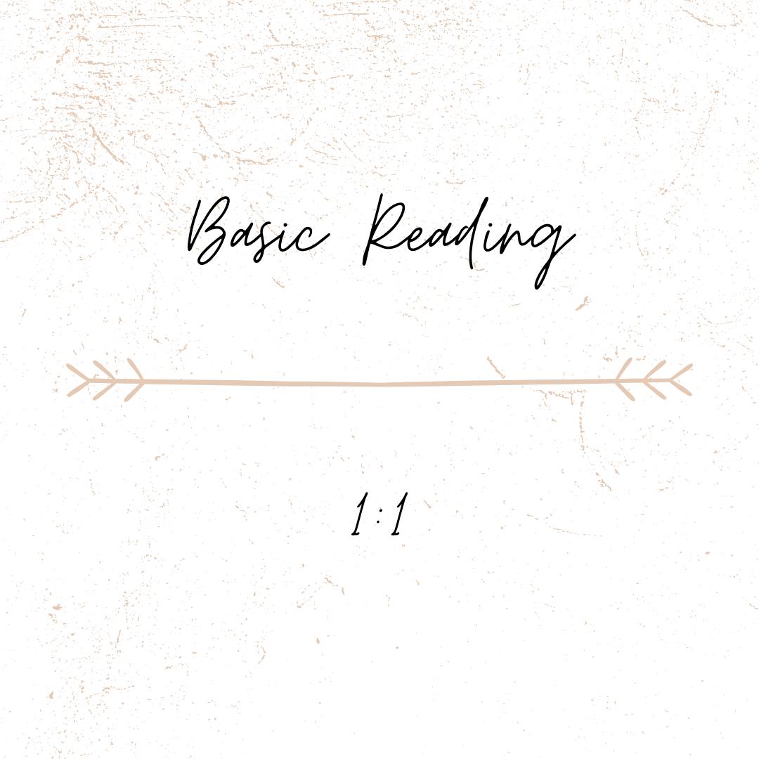 Basic Reading 1:1