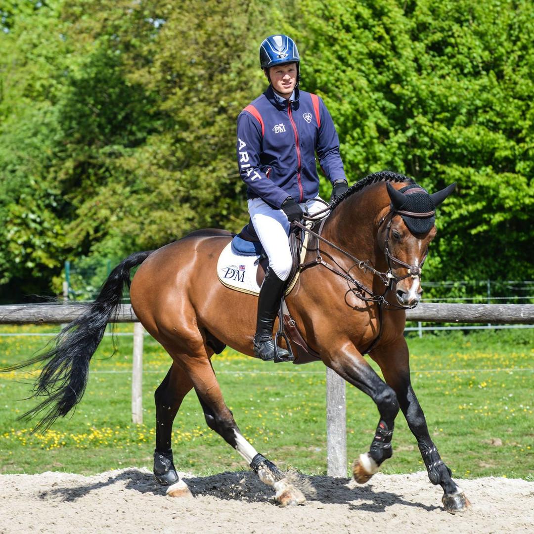 Lazarre equitation