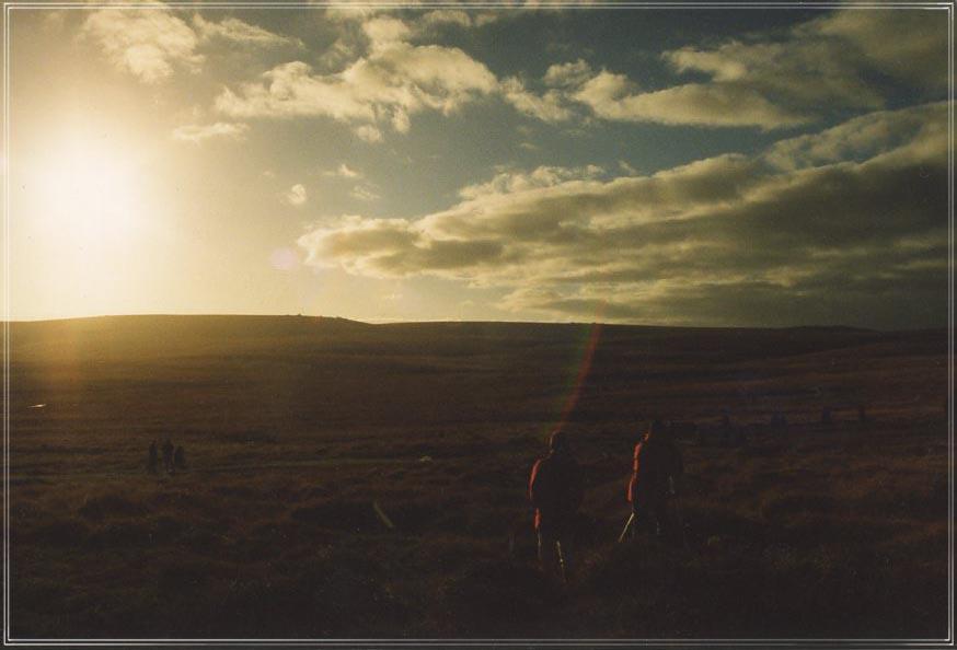Dartmoor #10