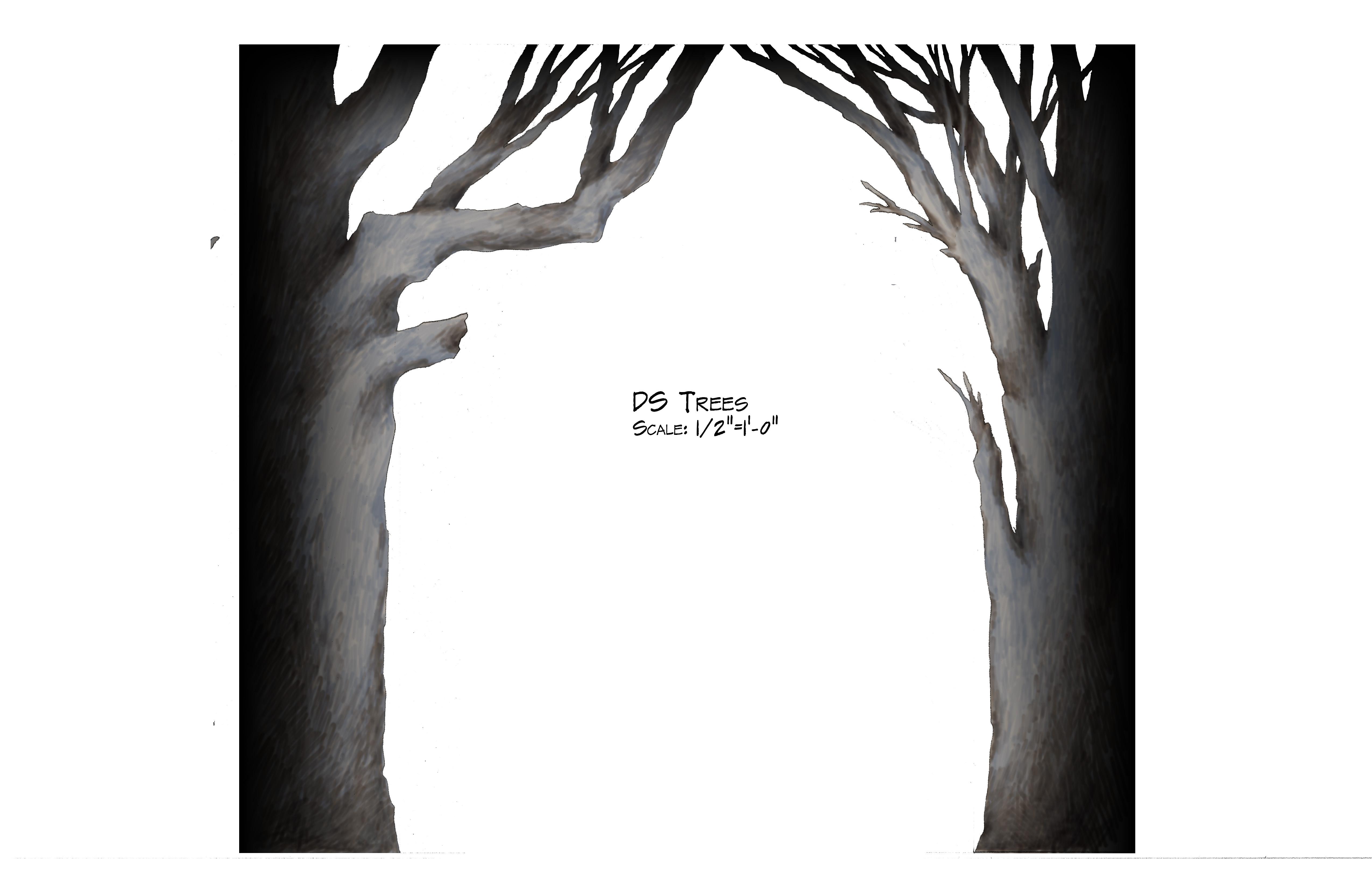 DS Trees