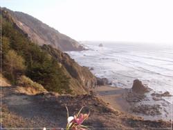 The Pacific Coast #2