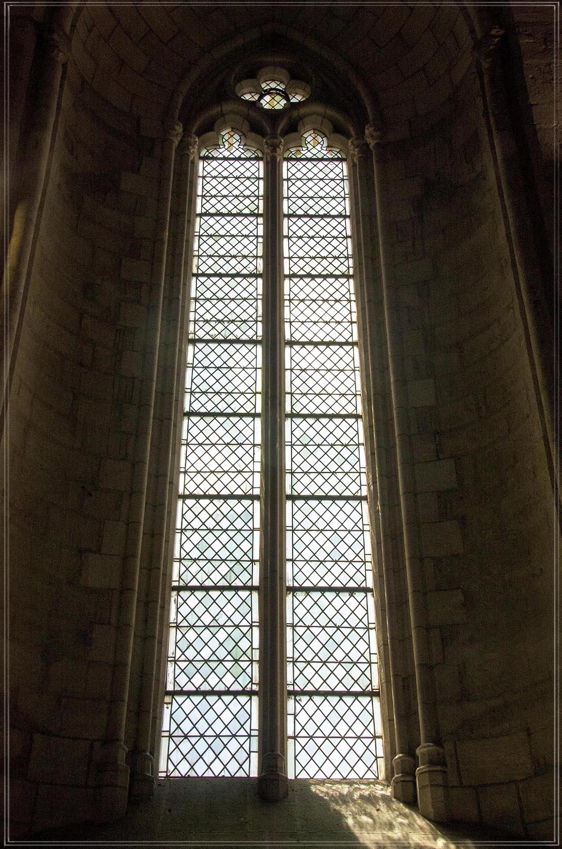 Palais des Papes #13
