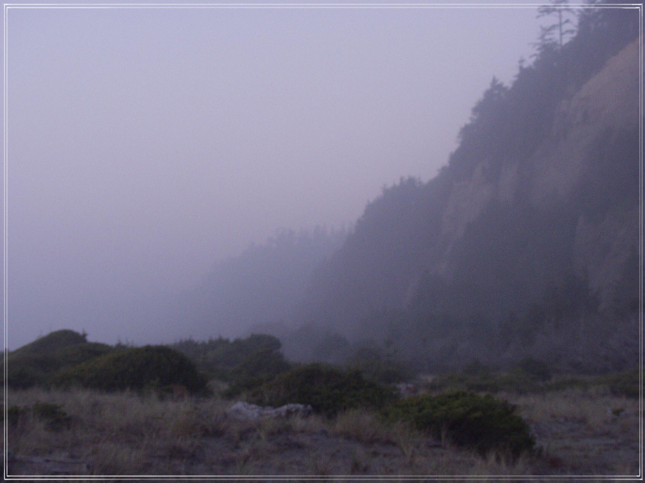 The Pacific Coast #1