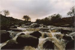 Dartmoor #6
