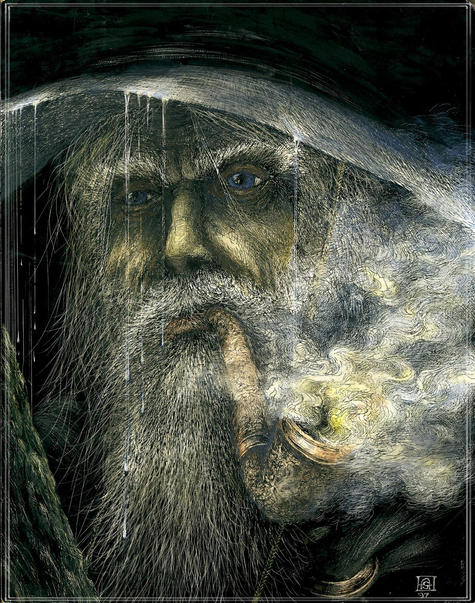 Gray Pilgrim
