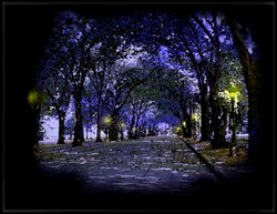 Projection #2: Tree-Lined Street