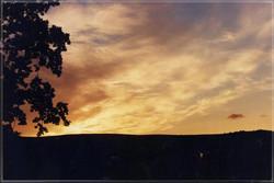 Dartmoor #12