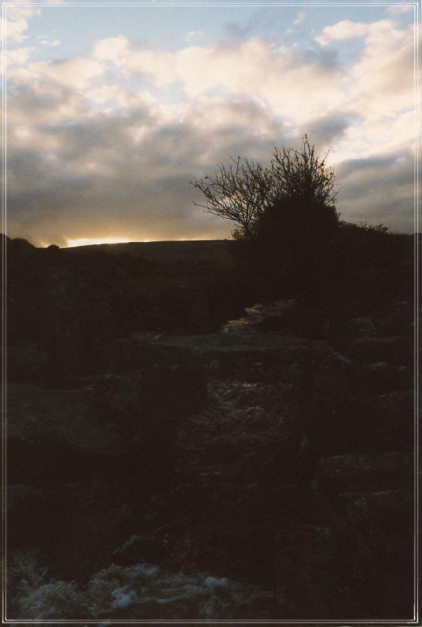 Dartmoor #5