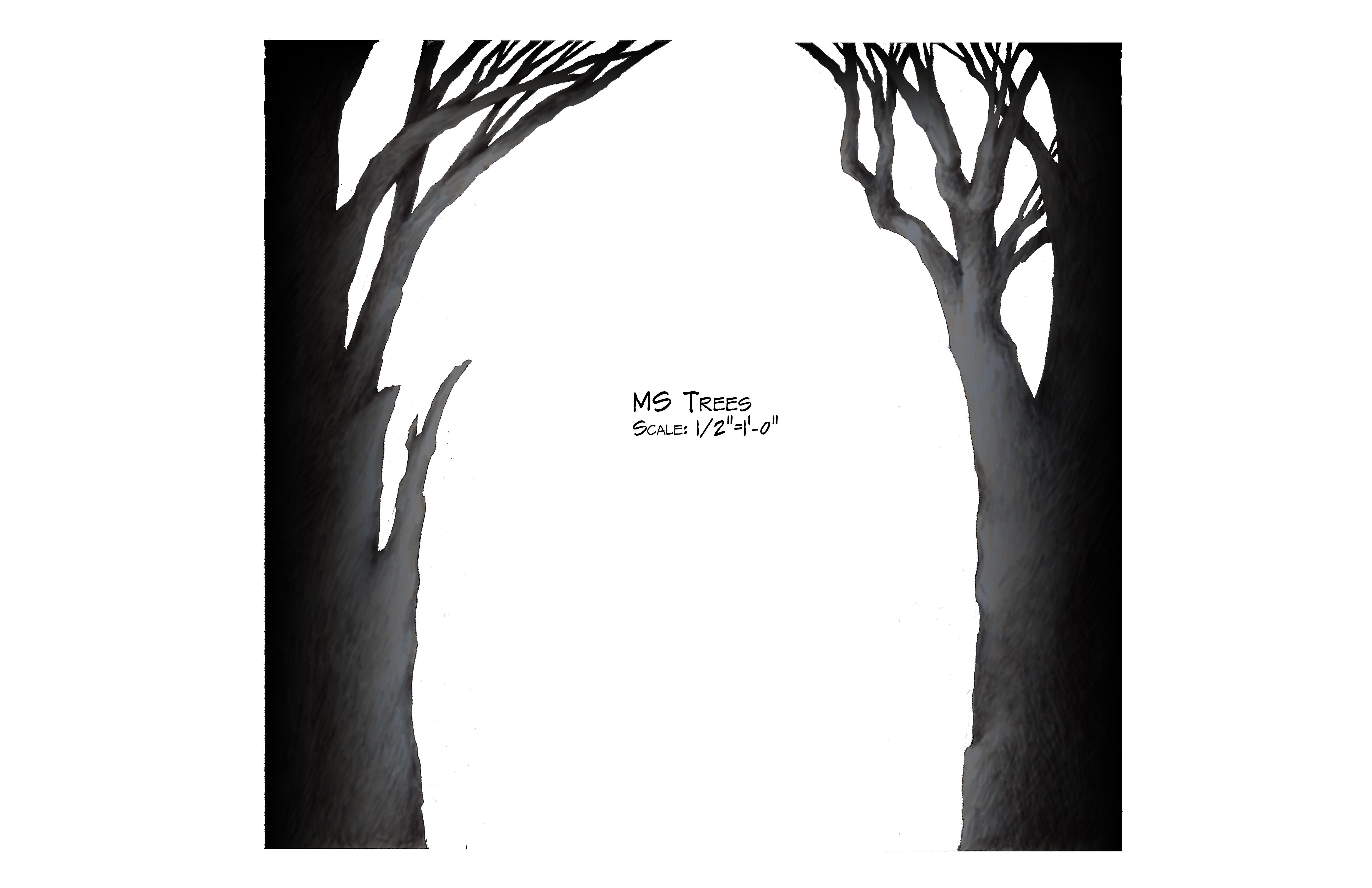 MS Trees