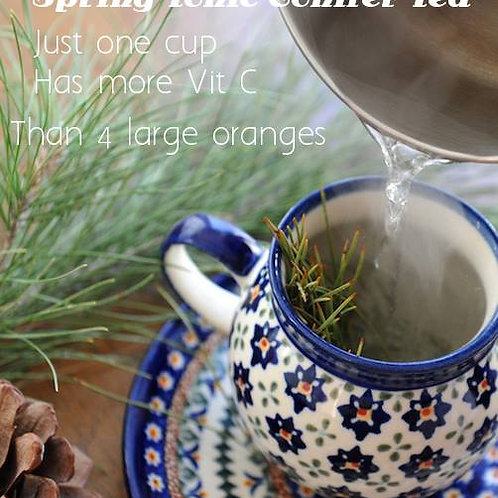 SOLD OUT - Pine Needle Tea - Eastern White Pine