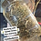 Thumbnail: SWEETGRASS Hemp Body Lotion ~100% Botanical