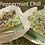Thumbnail: ~Forest Pebble~ Soap Saver Dishes