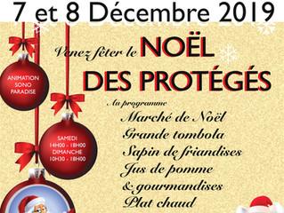 Venez fêter le Noël de nos protégés