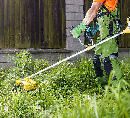 Trimming Grass FINAL .jpg