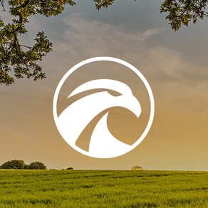 Creating a Logo for Groundwork Company Saker with New Web Design