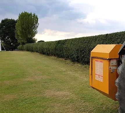 Hedge Image Cut.jpg