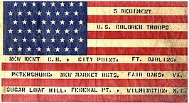 Colored Troop Flag.jpg