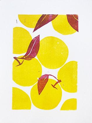 Apples linoprint