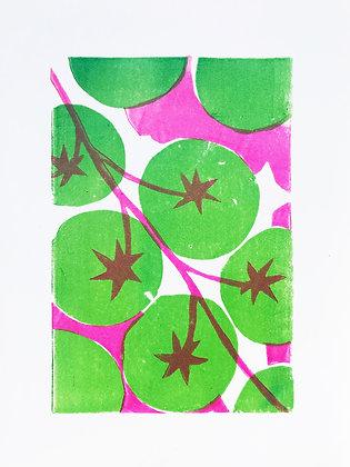 Tomatoes linoprint