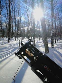 Danik Lapointe - Travaux sylvicole en hiver