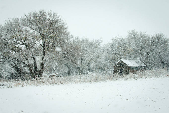 Prairie snow