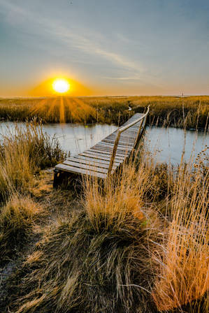 Sunrise Cheyenne Bottoms Wildlife Area