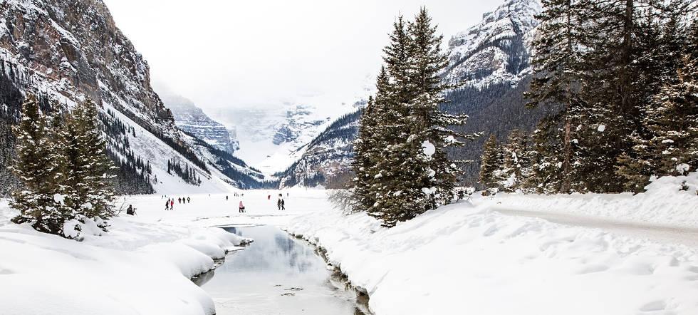Lake Louise travelers