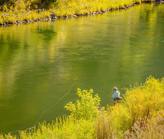 Fly Fisherman/Fall Colours
