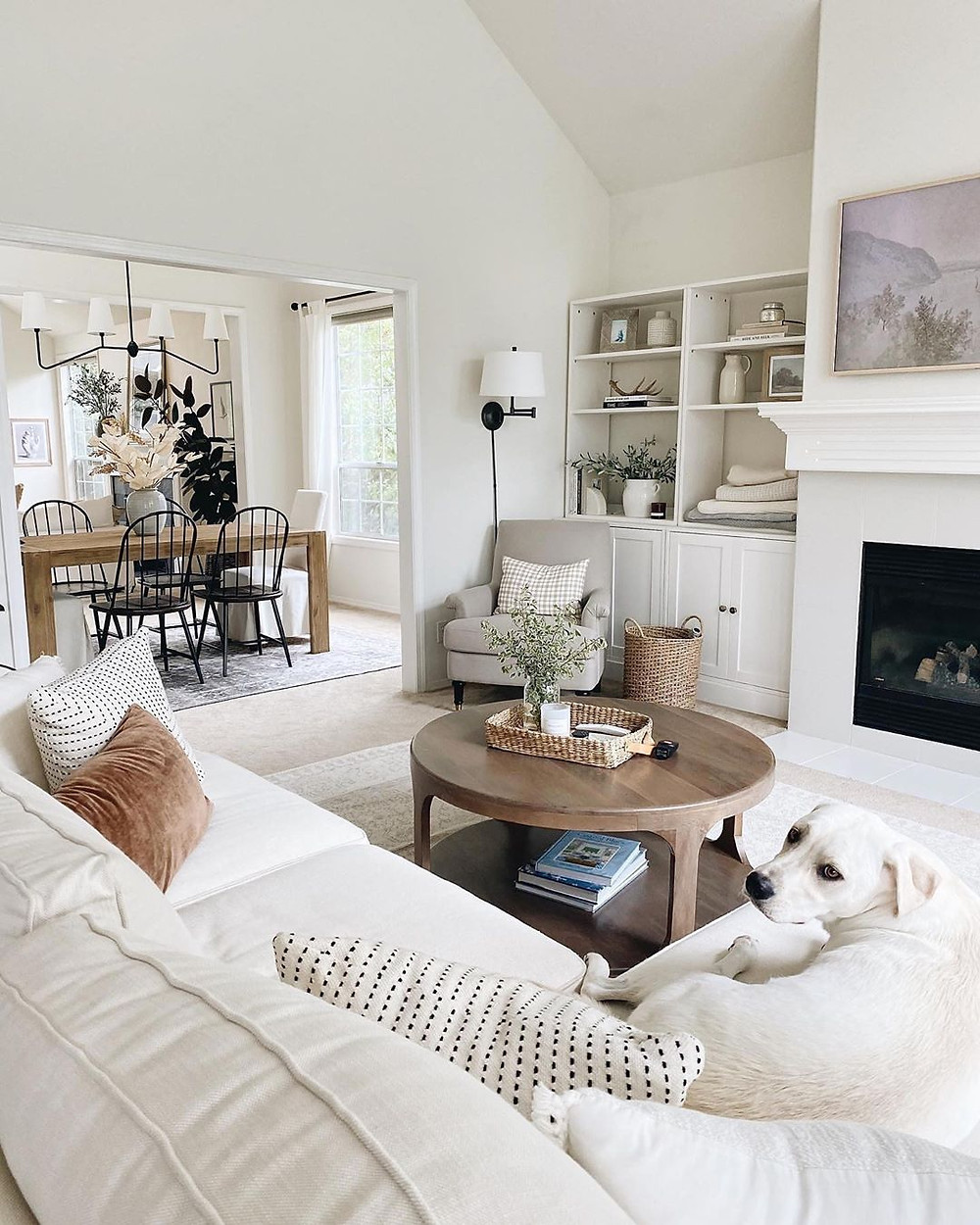 white living room with white dog on sofa